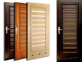 Drzwi wewnętrzne WINdoor SAMUN