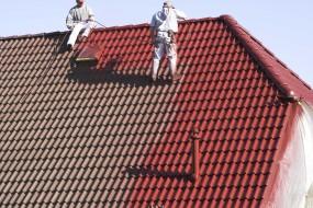 Farba Isonit - importer Idealny Dach Sp.j.